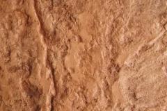 durcisseur-saumon-demoulant-terre